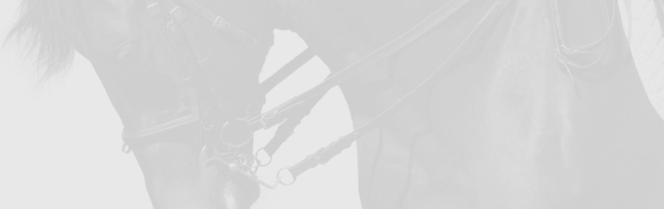 DYNAMIC-BANNER-IMAGE-01-1